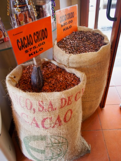 Raw cocoa beans ready for roasting