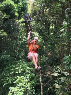 The original jungle zip line